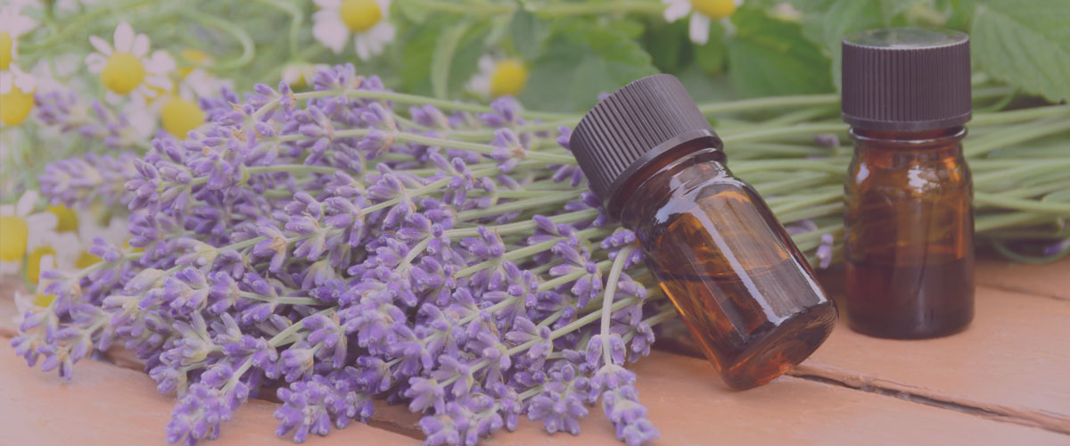 albany aromatherapy